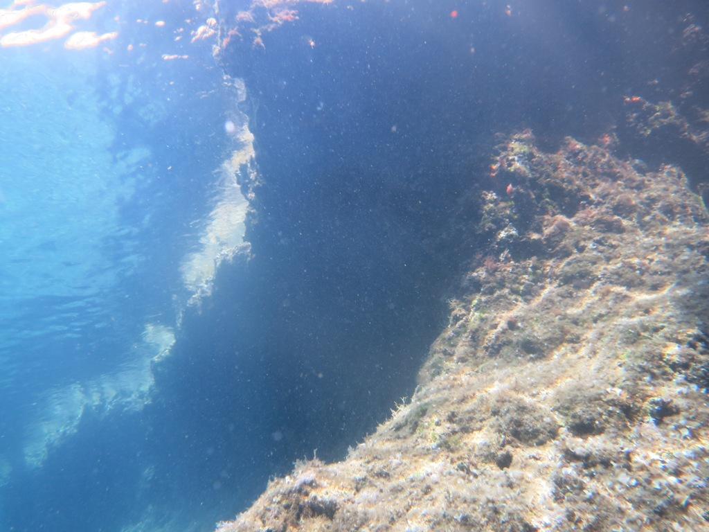 Krk unter Wasser © Monika Diel