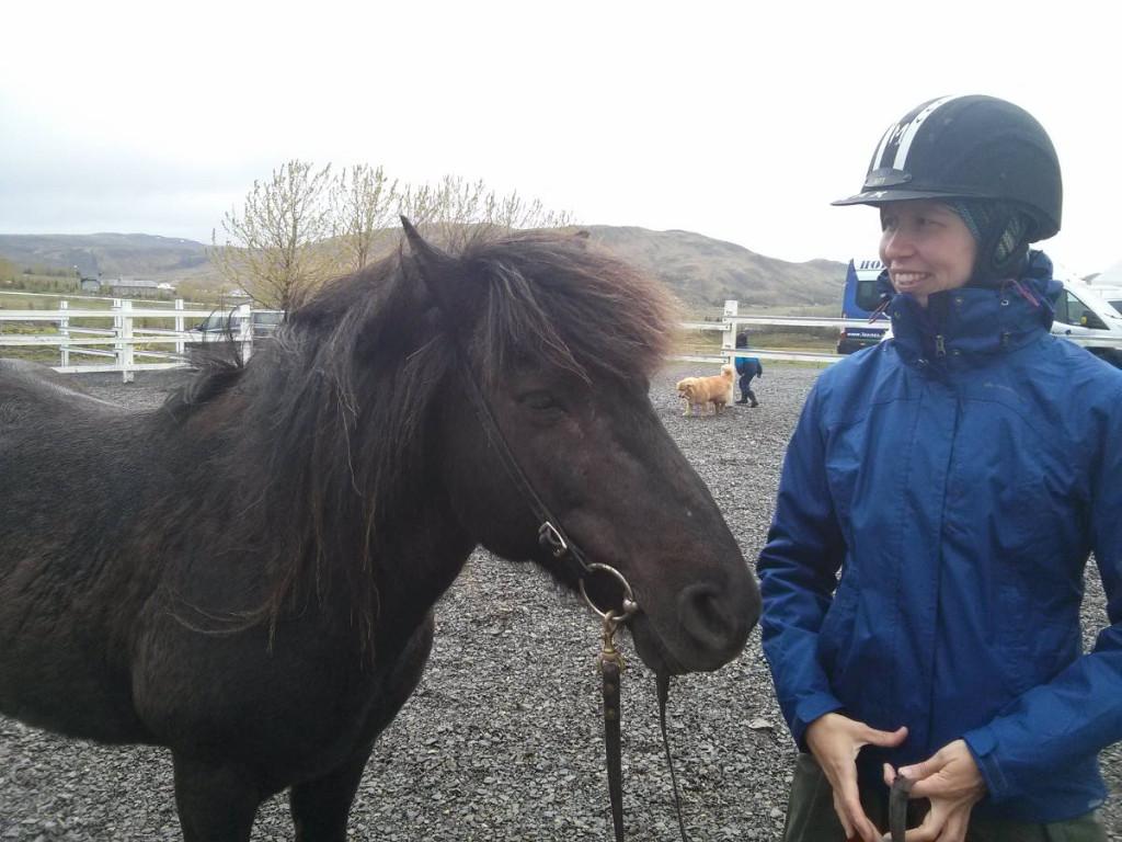 Isländer Thor & Cora auf der Laxnes Horsefarm © Markus Backes
