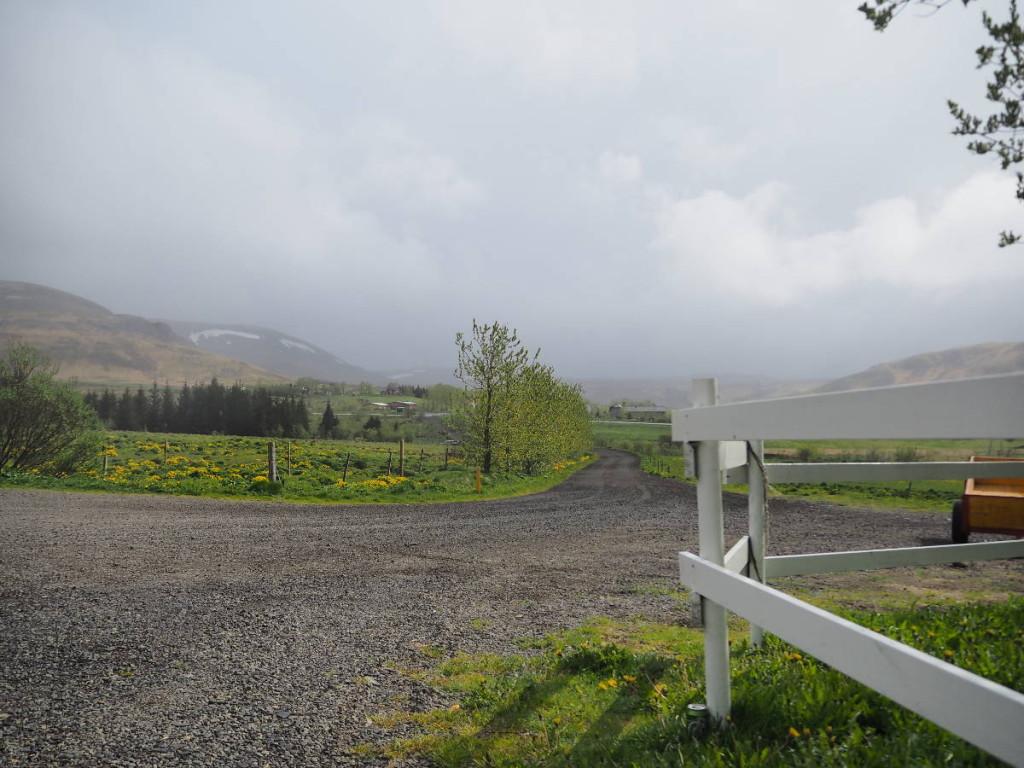 Umgebung Laxnes Horsefarm © Cora Berger