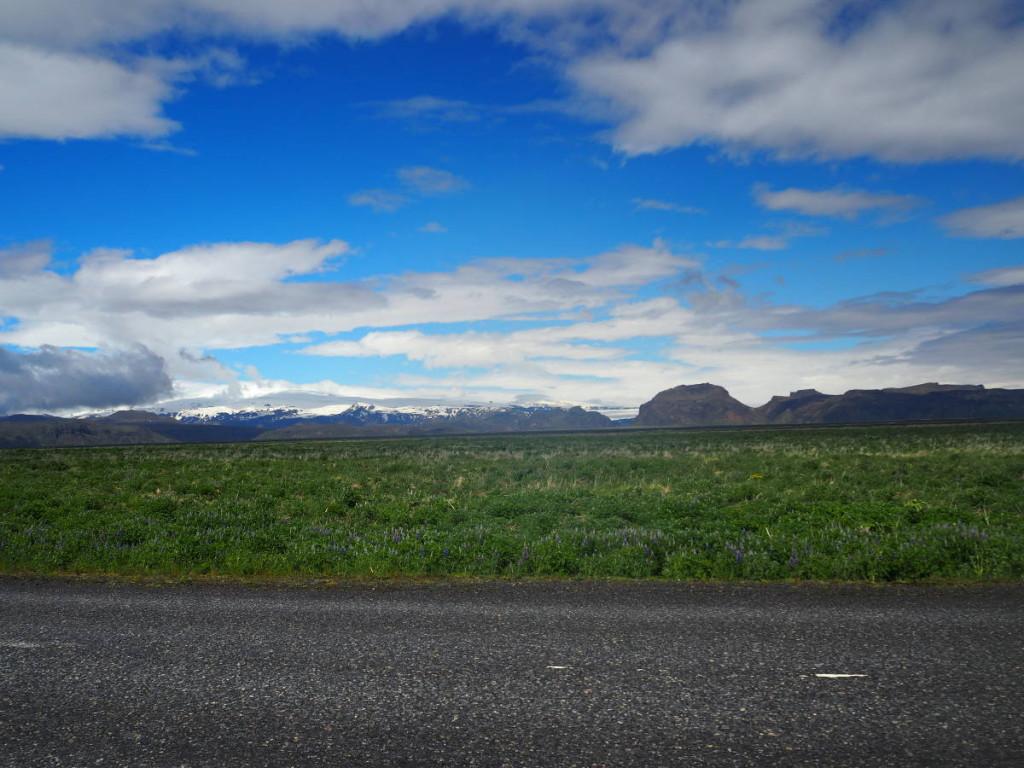Gletscher in Sicht und Lupinenfelder © Cora Berger