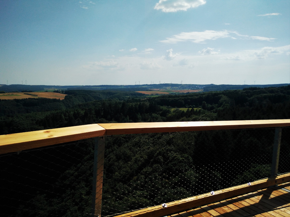 Blick vom Turm Baumwipfelpfad Saarschleife © Cora Berger