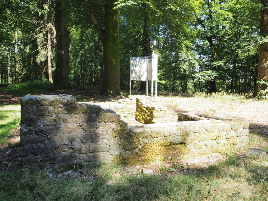 Mauerwerk Plateau Keltischer Ringwall Otzenhausen © Cora Berger