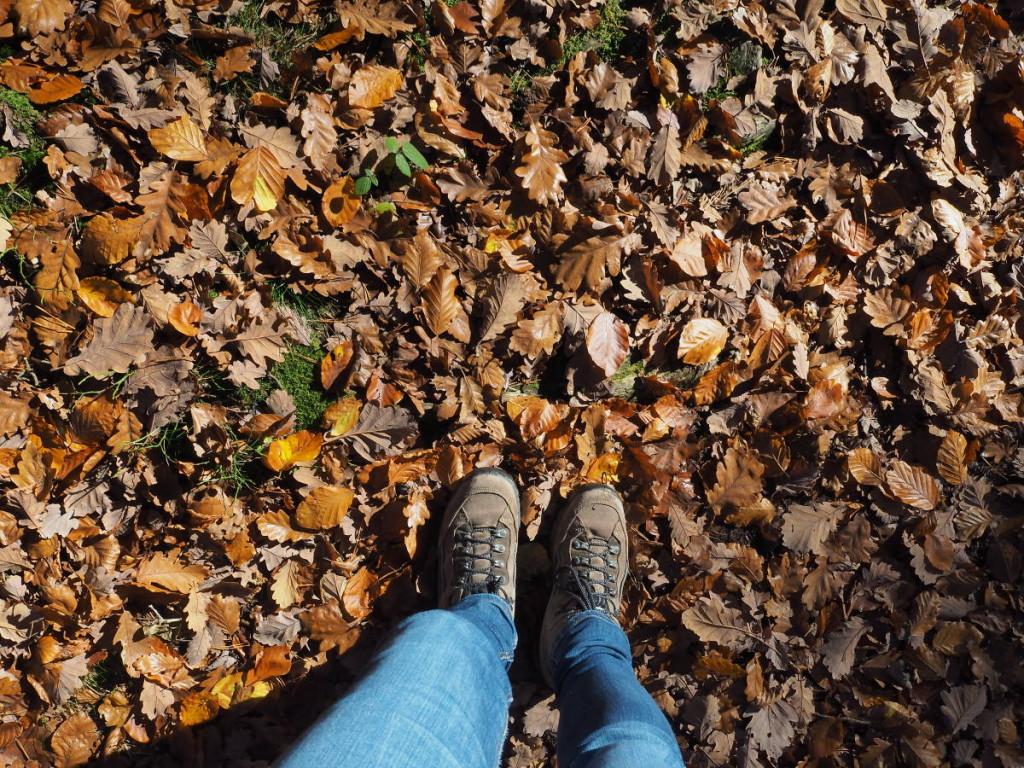 Wanderschuhe am Waldboden bei Weiskirchen © Cora Berger