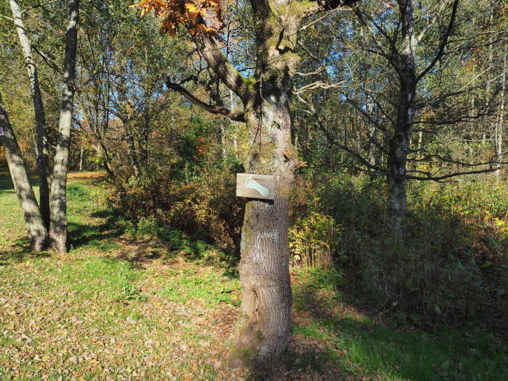 Barfußpfad Schild bei Waldhölzbach ©