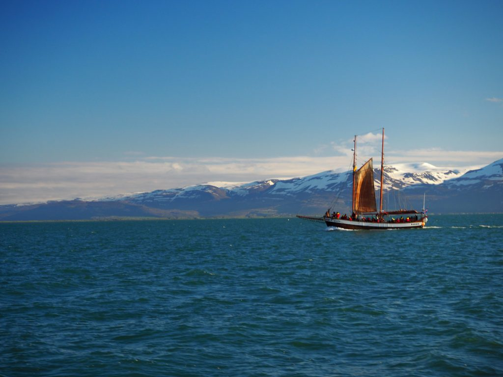 Whale Watching Ship at Húsavík © Markus Backes