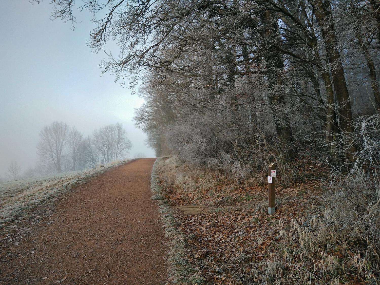 Winterlicher Herzweg am Schaumberg © Cora Berger