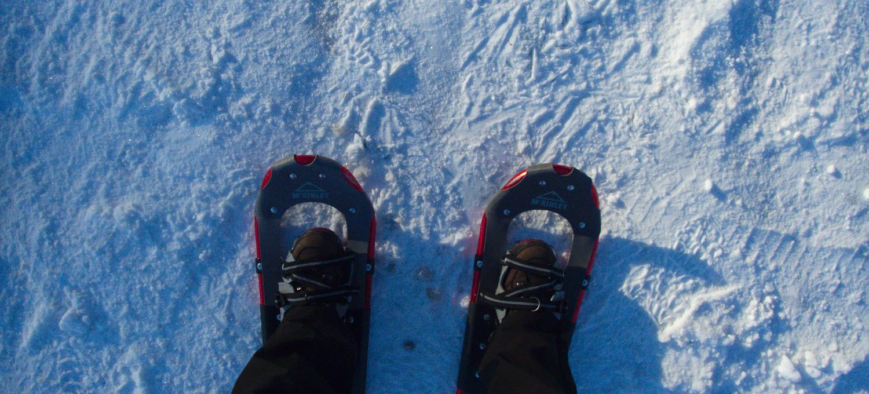 Schneeschuhwandern Reinsfeld © Cora Berger | greenshapedheart.de