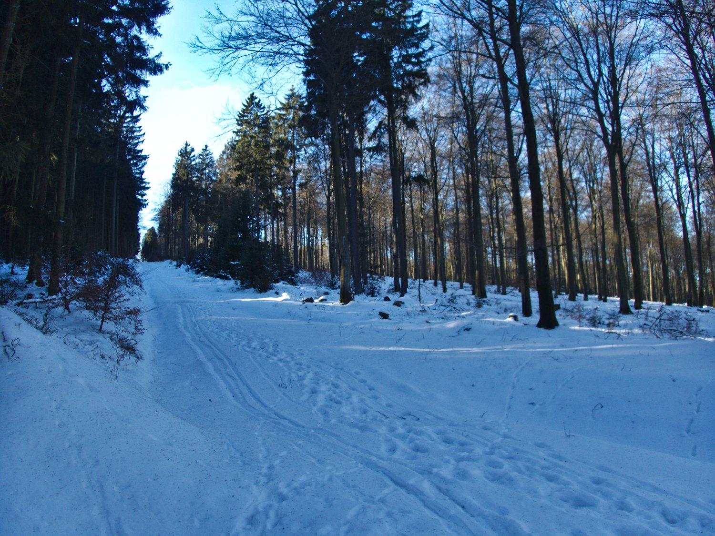 Schneebedeckte Wege bei Reinsfeld © Cora Berger | greenshapedheart.de