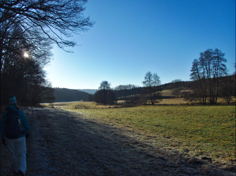 Winterlandschaft im Sumpfgebiet bei Mitlosheim © Cora Berger | greenshapedheart.de