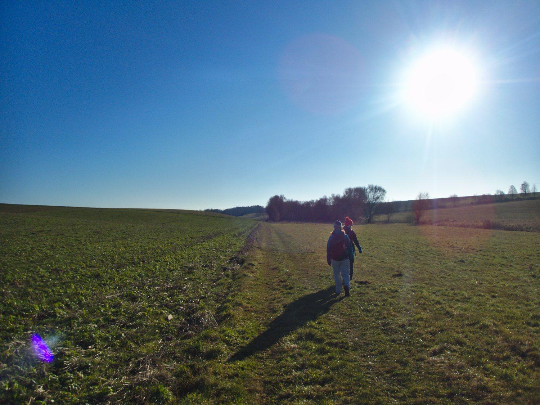 Mittagssone im Tal bei Mitlosheim © Cora Berger | greenshapedheart.de