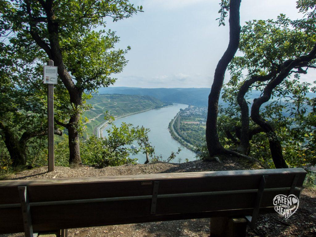 Ausblick auf den Rhein vom Mittelrhein-Klettersteig © Cora Berger | greenshapedheart.de