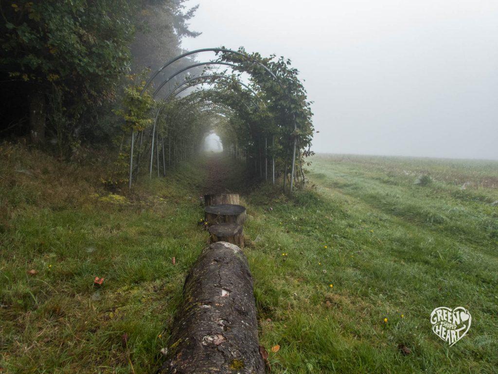 Windradtunnel auf Wind, Wasser & Wacken © Cora Berger | greenshapedheart.de