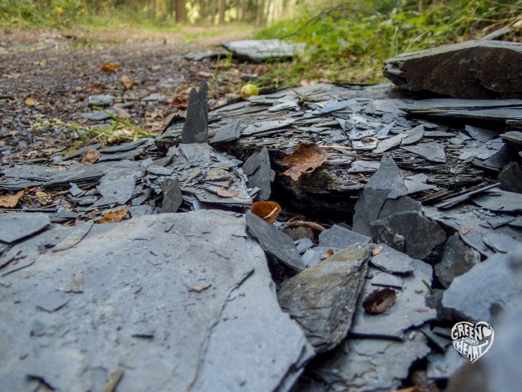 Schiefer im Soonwald auf der Traumschleife Hahnenbachtaltour © Cora Berger | greenshapedheart.de