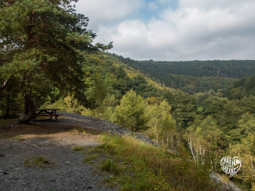 Ausblick in den Soonwald auf der Traumschleife Hahnenbachtaltour © Cora Berger | greenshapedheart.de