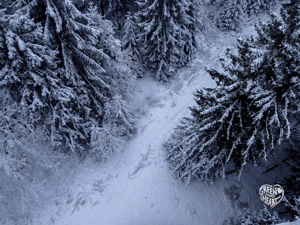 Blick vom Aussichtspunkt auf den winterlichen Idarkopf © Cora Berger | greenshapedheart.de