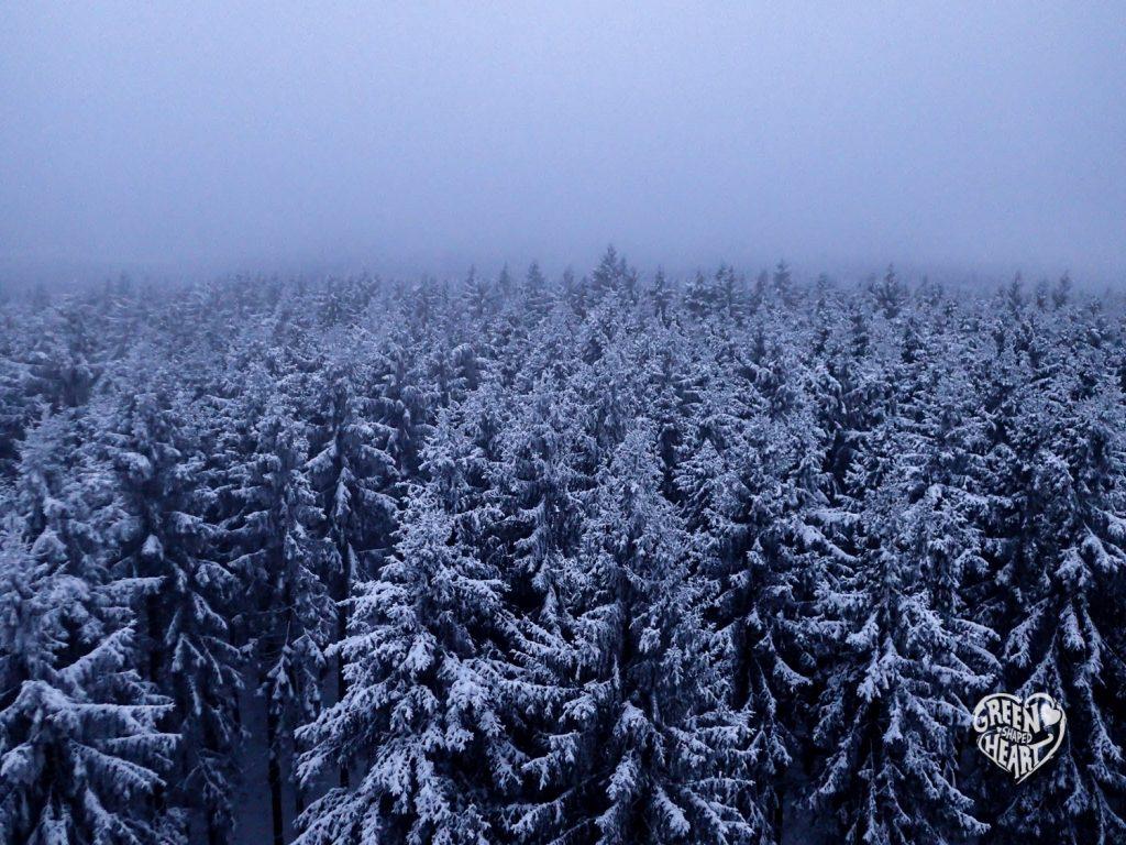 Winter am Idarkopf - Winter Hike © Cora Berger | greenshapedheart.de