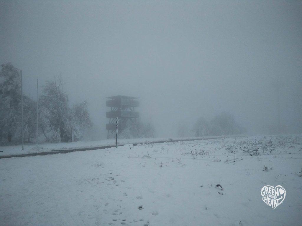 Verschneiter Aussichtsturm am Erbeskopf © Cora Backes | Green Shaped Heart