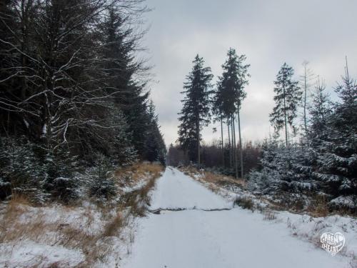 Erster Schnee im Nationalpark Hunsrück-Hochwald © Cora Backes | Green Shaped Heart